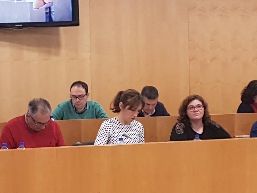 IU Y Participa Sevilla presentan en Diputación una Moción sobre el aumento de la financiación de las iniciativas de Cooperación Local de la Junta de Andalucía por el incremento del SMI.